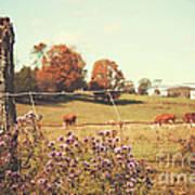 Rural Country Scene Art Print