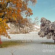Rural Early Snow In Western Colorado  Art Print