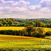 Rural England Art Print