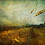 Ruralscape #19. The Victory Of Silence Art Print