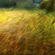 Ruralscape #8. Field And Wind Art Print