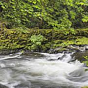 Rushing Water At Cedar Creek Washington State Art Print