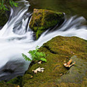 Rushing Water At Whatcom Falls Park Art Print