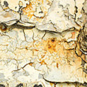 Rust And Peeling Paint Art Print