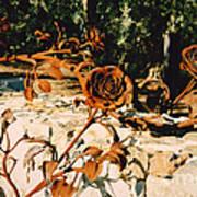 Rust And Roses Art Print