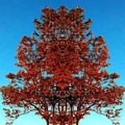 Rust And Sky 2 - Abstract Art Photo Art Print