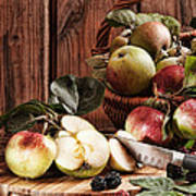 Rustic Apples Art Print by Amanda Elwell