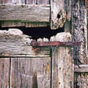 Rustic Barn Door Art Print