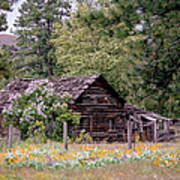 Rustic Cabin In The Mountains Art Print