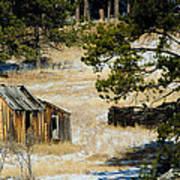 Rustic Cabin In The Pines Art Print