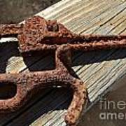 Rusty Tools II Art Print