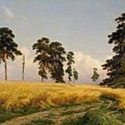 Rye Art Print