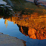 Sabino Canyon Reflection Art Print