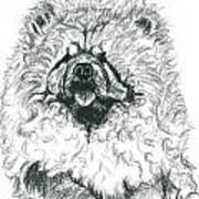 Sachiko Art Print