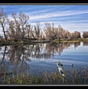 Sacramento Wildlife Refuge Pond With Blue Heron Art Print