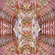 Sacred Eyes Of Joy Art Print