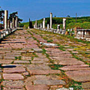Sacred Road To Asclepion In Pergamum-turkey  Art Print