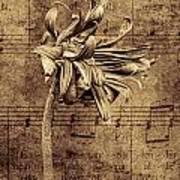 Sad Song In Sepia Art Print