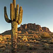 Saguaro Cactus And Superstition Art Print