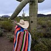 Saguaro Cactus The Visitor 1 Art Print