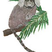 Tamarin Monkey Art Art Print