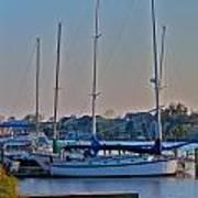 Sailboat At Sunset Art Print