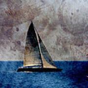 Sailboat Bird W Metal Art Print
