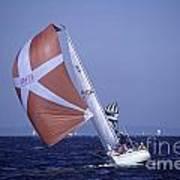 Sailboat Race On Puget Sound Art Print