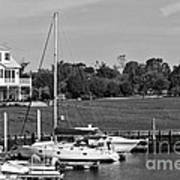 Sailboats Docked At North Myrtle Beach Mono Art Print by John Rizzuto