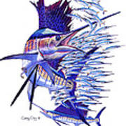Sailfish Ballyhoo Art Print