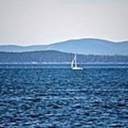 Sailing Amidst The Buoys Art Print