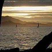 Sailing At Sunset On The Bay Art Print