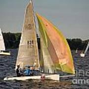 Sailing Dinghy At Stralsund Regatta Germany Art Print by David Davies