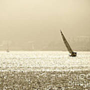 Sailing In San Diego Harbor Art Print by Artist and Photographer Laura Wrede