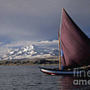 Sailing Boat On Lake Titicaca Art Print