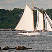 Sailing Portland Art Print
