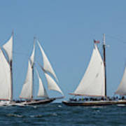 Sailing Ship In The Ocean At Gloucester Art Print