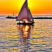 Sailing The Seven Seas Art Print
