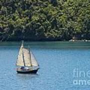Sails In The Wind Art Print