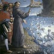 Saint Anthony Of Padua Preaching Art Print