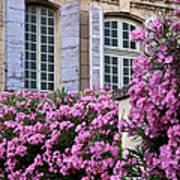 Saint Remy Windows Art Print