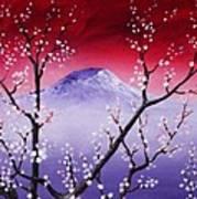 Sakura Art Print by Anastasiya Malakhova