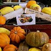 San Joaquin Valley Squash Display Art Print