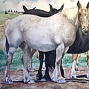 Sally's Horses Art Print