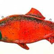Salmon 1 Art Print