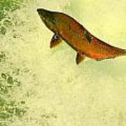 Salmon Run 3 Art Print by Mamie Gunning