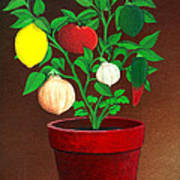 Salsa Plant Art Print