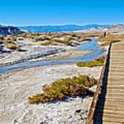 Salt Creek Trail Boardwalk In Death Valley National Park-california  Art Print