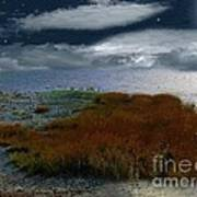 Salt Marsh At The Edge Of The Sea Art Print by RC DeWinter
