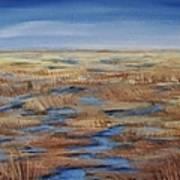 Salt Marsh In Summer Art Print